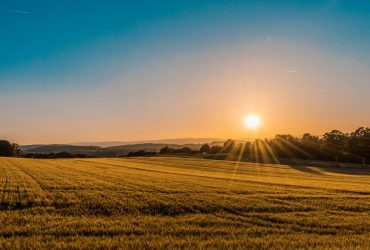 Kupujem poljoprivredno zemljište, bivša općina Podr. Slatina
