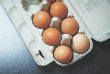Oplođena jaja kapora i golosijana na prodaju
